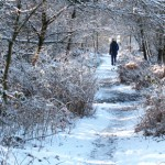 winter walks Herefordshire